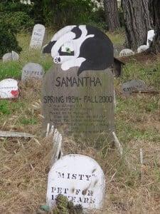 Beneficios de un Cementerio de Mascotas