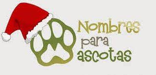 Los Mejores 63 Nombres para Mascotas Machos y Hembras en Idioma Español
