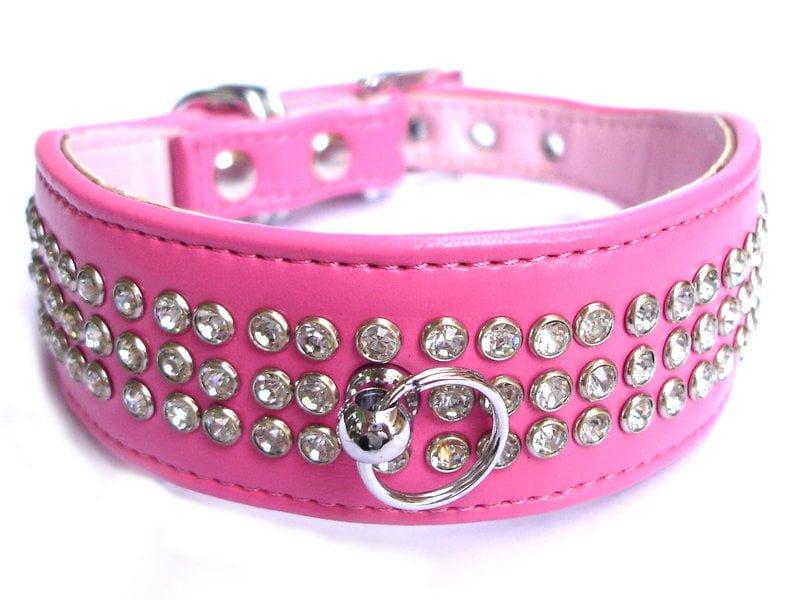 6 tips para saber realmente como escoger los collares para for Collares para perros