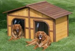 Tipos de Casa de Mascotas