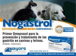 uso del omeprazol para perros