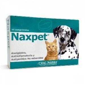 Beneficios del Uso del Ketoprofeno Oral en Perros