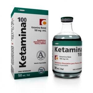 Peligros de la Ketamina en Perros Viejos