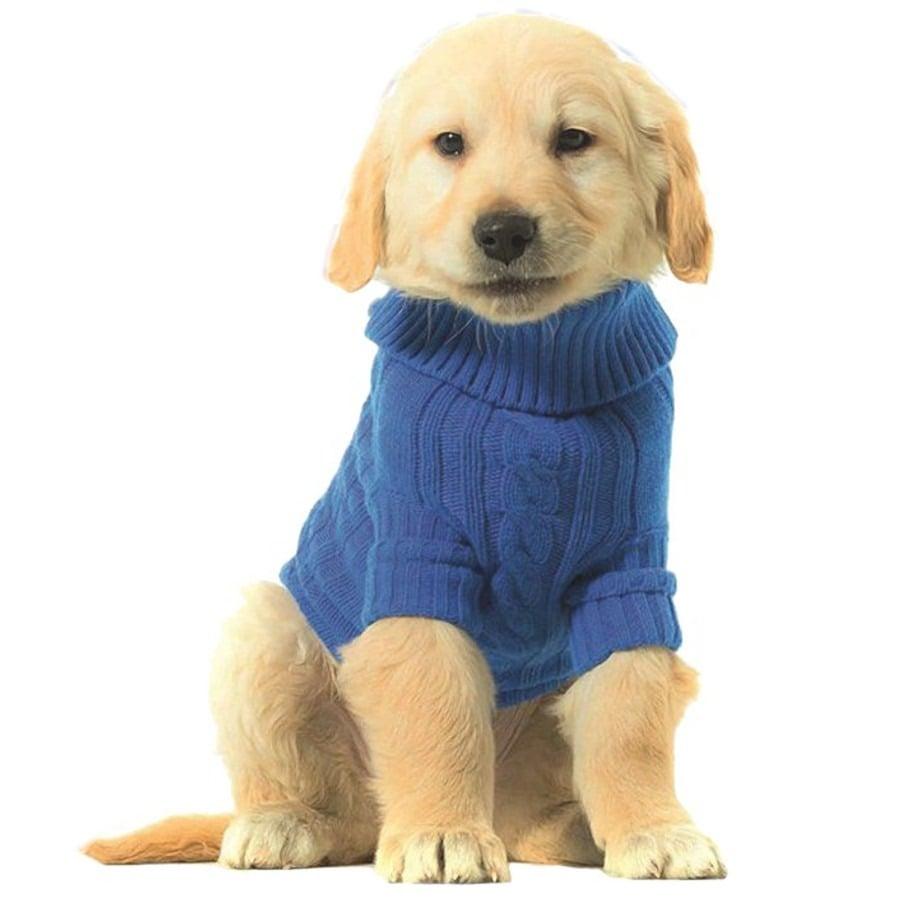 👍7 Sencillos Pasos Para que Usted Haga su Ropa Para Perros Pequeños ...