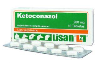 ¿Cual es el Uso Efectivo y Limitantes del Ketoconazol en Perros?