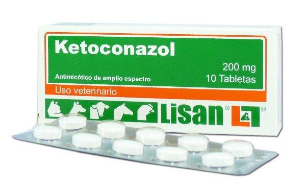 Ketoconazol en perros