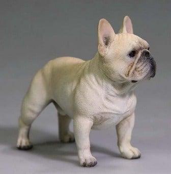 Enfermedades de los French Bulldog